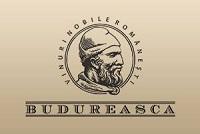 Crama Budureasca