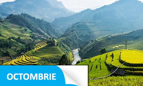 Afaceri.ro Vietnam