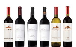 Vinuri Purcari