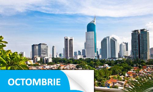 Afaceri.ro Indonezia
